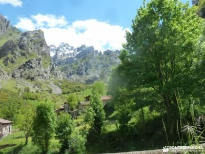 Ruta Cares-Picos de Europa; sajambre valle de belagua garganta de las nogaledas nacimiento del pisue